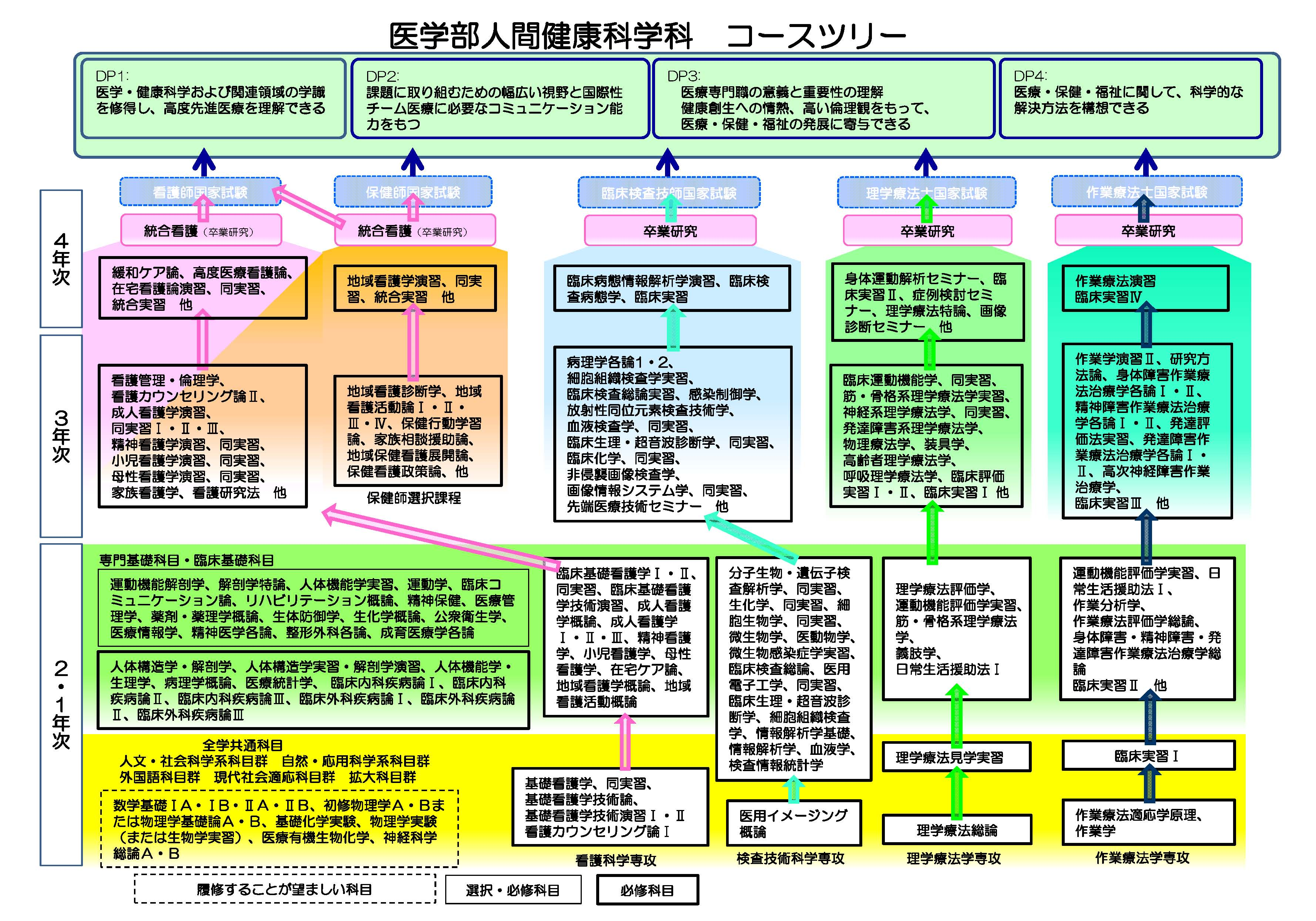 hs_gakubu-course_tree